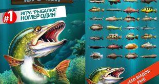 скачать игру Let's Fish на телефон