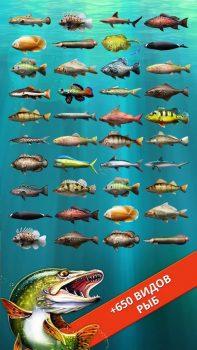 игра Let's Fish на телефон