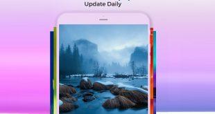 программа Cool Wallpapers HD для телефона