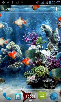 скачать обои аквариум на телефон